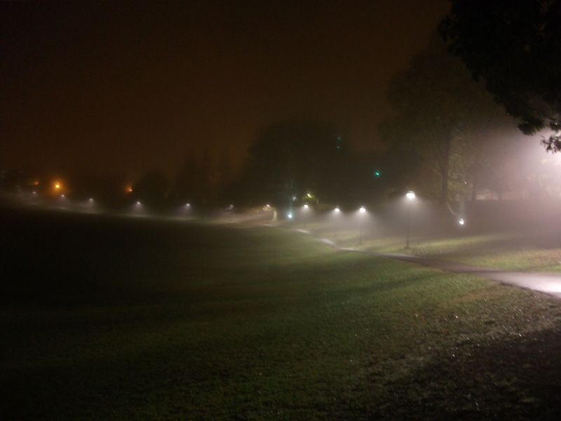 Downward-facing lights make cones of illuminated fog on the College Hall walkway