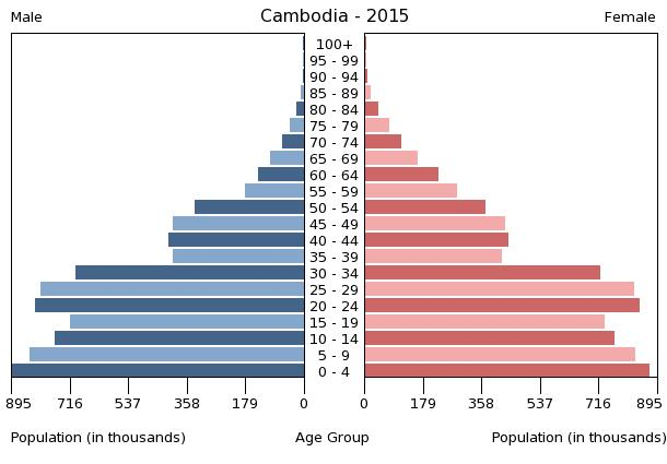Cambodia Demographic Pyramid