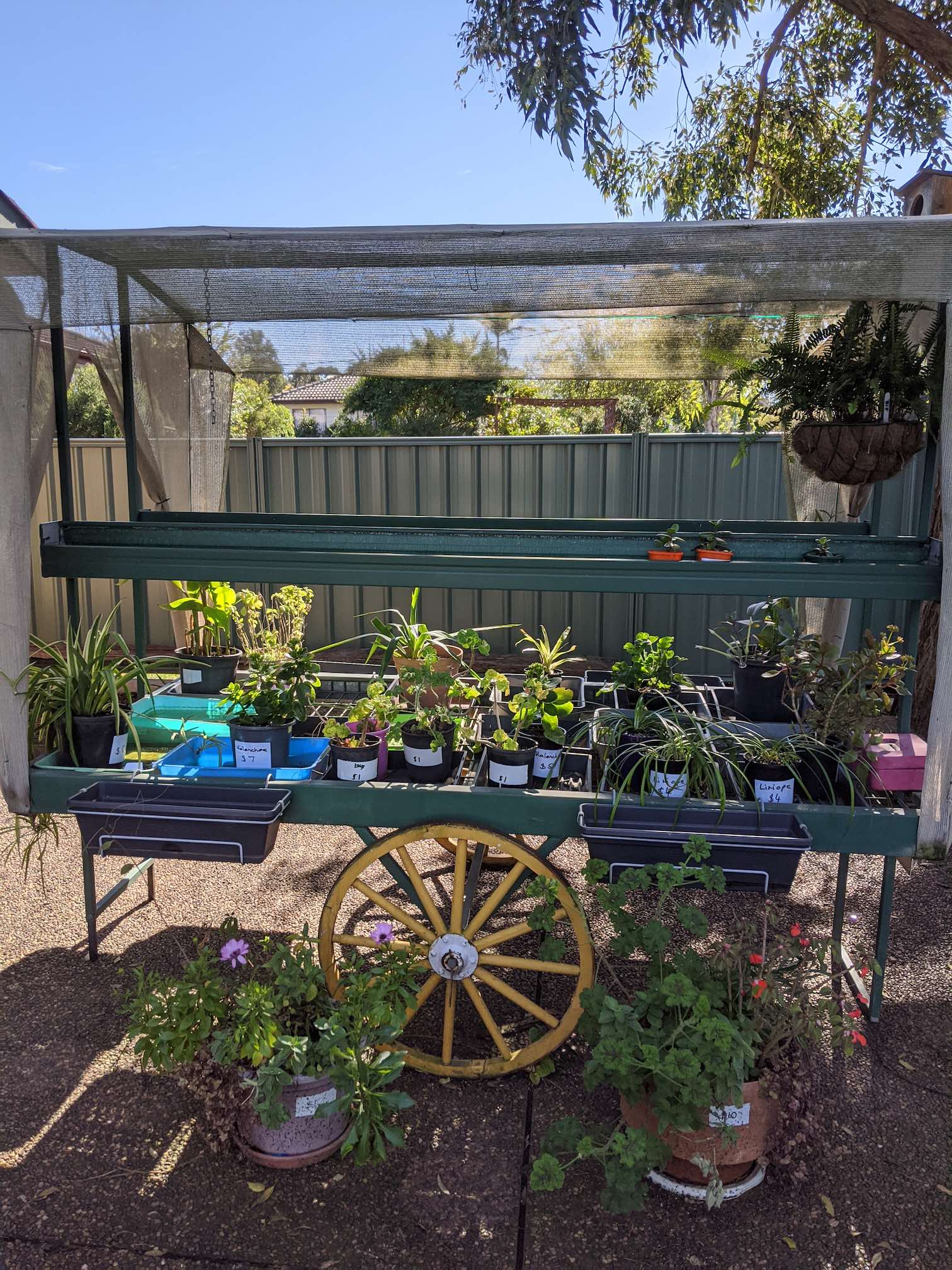 A front yard wagon full of plants for sale, individually priced.